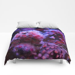 Under the Sea Blooming Magenta Coral Reef Sea anemone Underwater Photography Colored Lustre Print Comforters