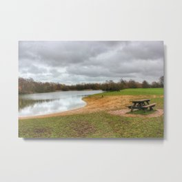Let's Sit By The Lake Metal Print