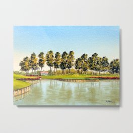 Sawgrass TPC Golf Course 17th Hole Metal Print
