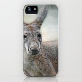 Western Grey Kangaroo - Wildlife iPhone Case