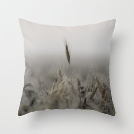 Tall Wheat in the Field Throw Pillow