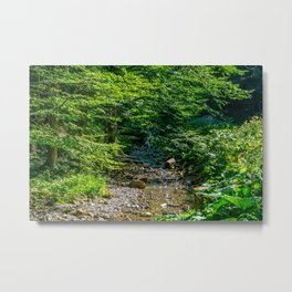 Small Creek in the Forest Metal Print