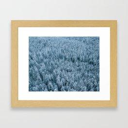 Winter pine forest aerial - Landscape Photography Framed Art Print