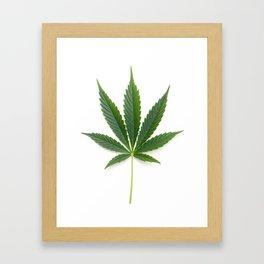 Cannabis/Marijuana/Weed leaf Framed Art Print