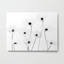black and white cosmos Metal Print