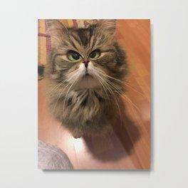 Ticked off Cat Metal Print