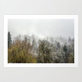 Winter Spell Art Print