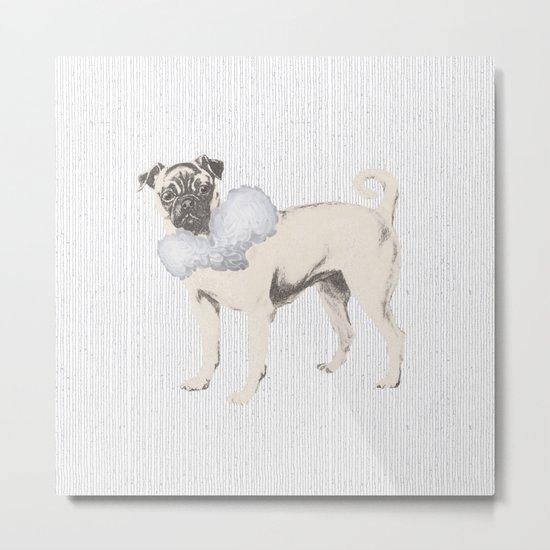 Pug in a Ruff Metal Print