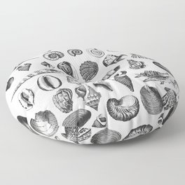 Vintage Sea Shell Drawing Black And White Floor Pillow