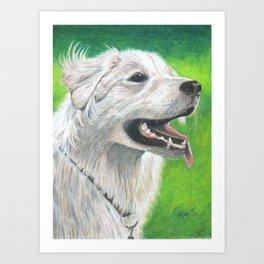 A Dog's Love Never Dies Art Print