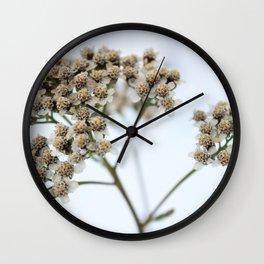 White on White Wall Clock