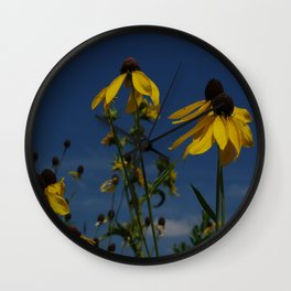 Yellow coneflowers - spectacular gold and blue Wall Clock
