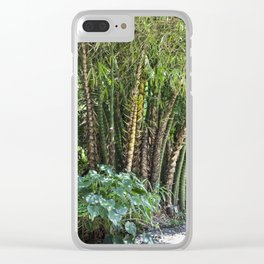 Palm Grove Clear iPhone Case