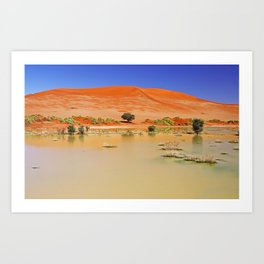Water in the Namib desert after rain season, Namibia Art Print