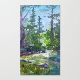 Yosemite Creek Canvas Print