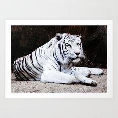 Wild Beauty Art Print