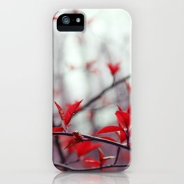 Parallel beauty iPhone Case