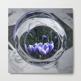 First blossoms of another spring Metal Print