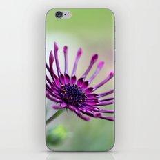 vibrant purple flower iPhone & iPod Skin
