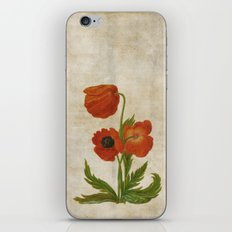 Vintage painting- Bunch of poppies Poppy Flower floral iPhone & iPod Skin