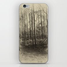 Aged iPhone & iPod Skin