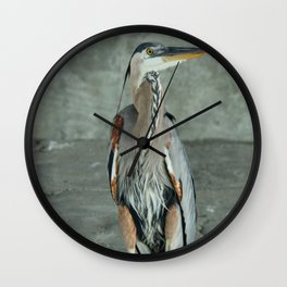 Great Blue Heron Photography Print Wall Clock
