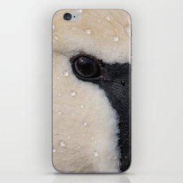 Mute Swan in Winter - CloseUp iPhone Skin