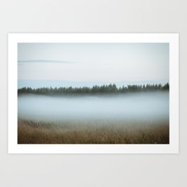 Misty forest 3/5 Art Print