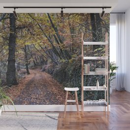 Autumn dreams. Come into the woods.... Wall Mural