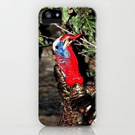 Wild Turkey Close Up iPhone Case