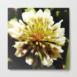 Clover Fun v.1 Metal Print