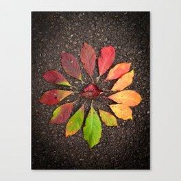 Leaf Love No.1 Canvas Print