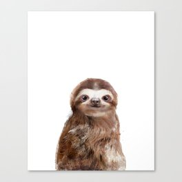 Little Sloth Canvas Print
