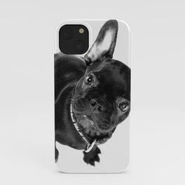 Bulldog iPhone Case