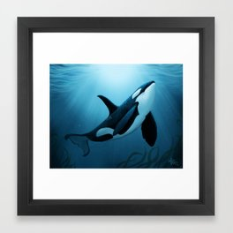 """The Dreamer"" by Amber Marine ~ Orca / Killer Whale Art, (Copyright 2015) Framed Art Print"