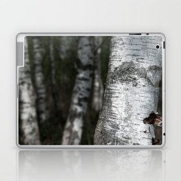 birches II Laptop & iPad Skin
