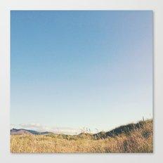 ENDLESS SKIES Canvas Print