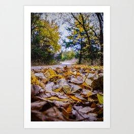 The Trail Art Print