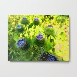 Hello There! Bee Metal Print