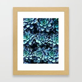 Blue And Green Succulent Plants Framed Art Print
