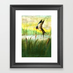 The Swallow and the Reed Framed Art Print
