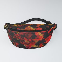STERIC PHENOLS Fanny Pack
