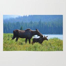Mother moose & calf at Maligne Lake in Jasper National Park Rug