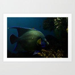 Fish #2 Art Print
