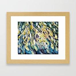 seaweed - algues Framed Art Print