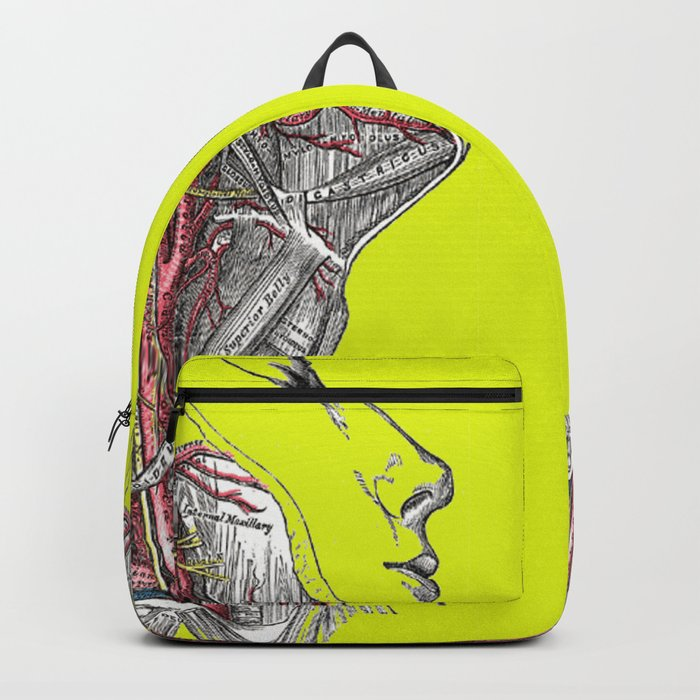 Dual anatomy Backpack