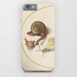 Naturalist Snails iPhone Case