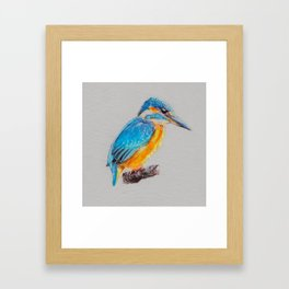 Kingfisher 4 Framed Art Print