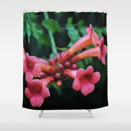 Coral Pink Trumpet Honeysuckle Shower Curtain