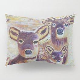 Curious | Curieux Pillow Sham